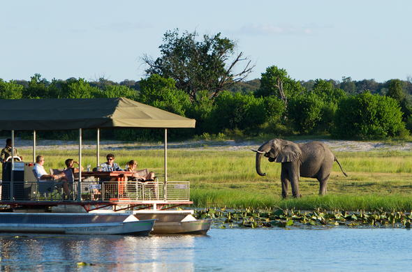 Game viewing on Chobe River.