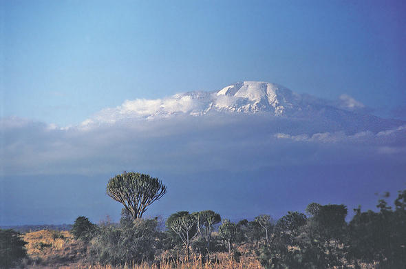 Stand on the Roof of Africa. Kilimanjaro!