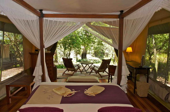 Tented chalet with private patio at Mara Intrepids.