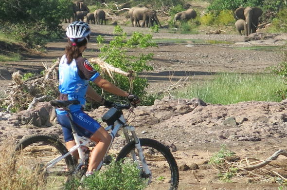 Cycling safari in Northern Tuli Game Reserve.