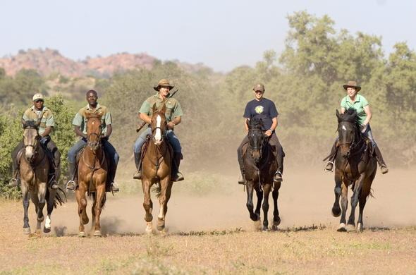 Enjoy horse riding safaris in Nortern Tuli Game Reserve.