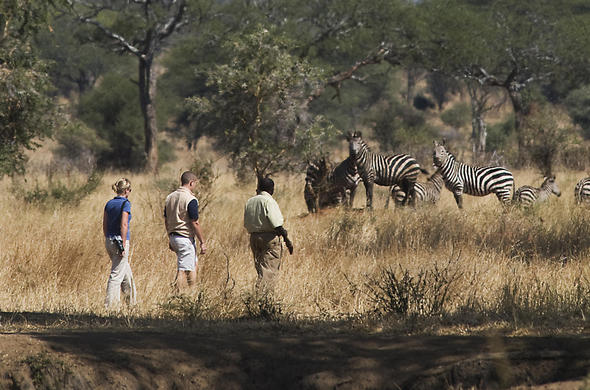 Selou Sands River Camp walking safari